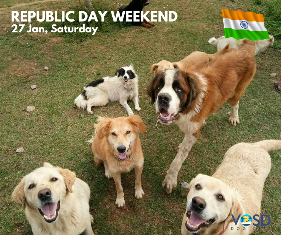 Republic day weekend at the VOSD Sanctuary I www.vosd.in